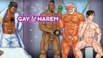 APK gay game Gay Harem
